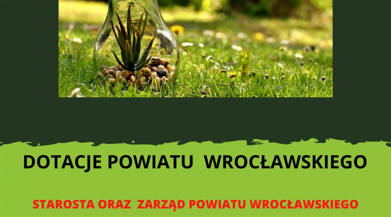 żarówka leżąca na trawie, wypełniona kamykami i zieloną rośliną.